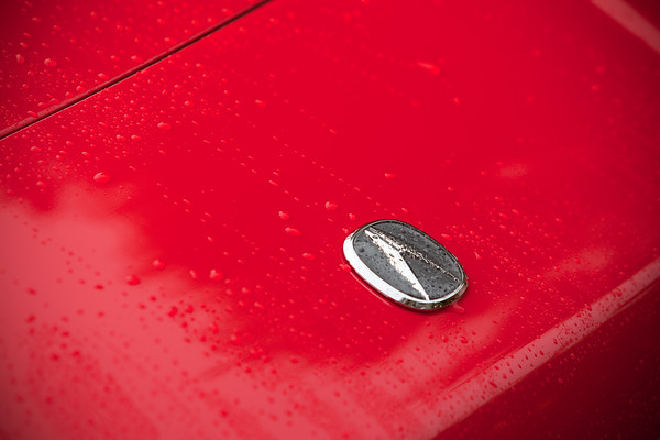 In all of the years I have owned my dream car, I do not think I have ever taken close ups of my car while it is still wet