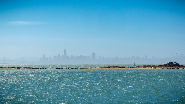 San Francisco from Point Potrero.  Craig drove us out here to show us lots filled with Tesla Model 3s ready to be shipped, but they are all gone...Tesla is making a huge push to end this quarter strong!