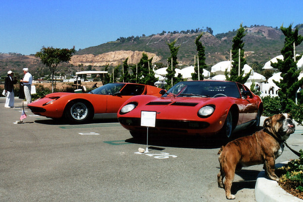 A bull-dog protects three 70s-era Lamborghini Miuras and a 'Rambo Lambo' in the spots neighboring our NSXCA group
