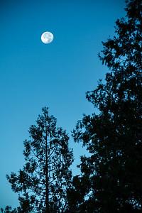 Closer shot of the moon