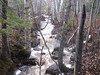 SH22.5:  A typical unnamed creek;  one of dozens that run out of the hills and into Lake Superior.  Helen took this photo and named it Veronica's creek, after her Mother..