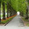 20_05448 Frognerparken 200507 IG