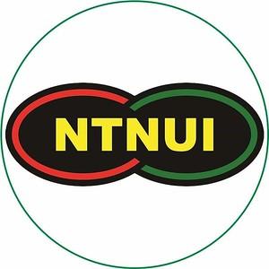 NTNUI Profil