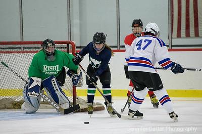 Ladies Hockey NTW