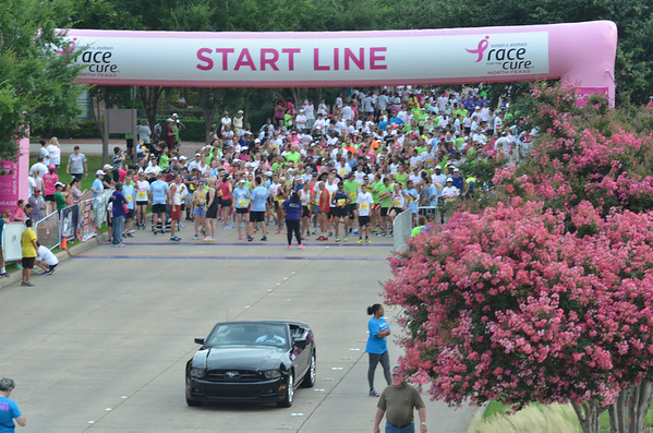 2014 Plano Race for the Cure
