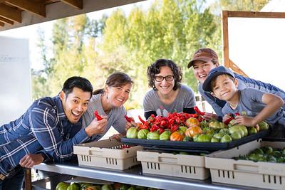 NUTR 302 Food Systems: Harvest to Health