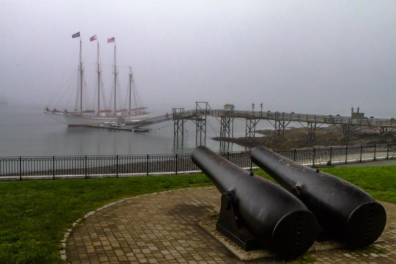 Class1D_HM_paula neumann_protected harbor