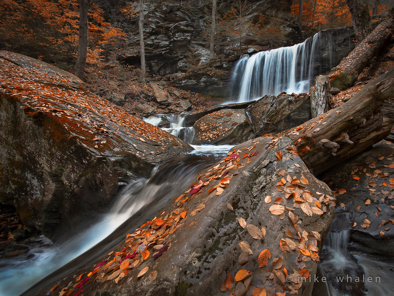 Class3C_HM_Mike Whalen_Fall Colors