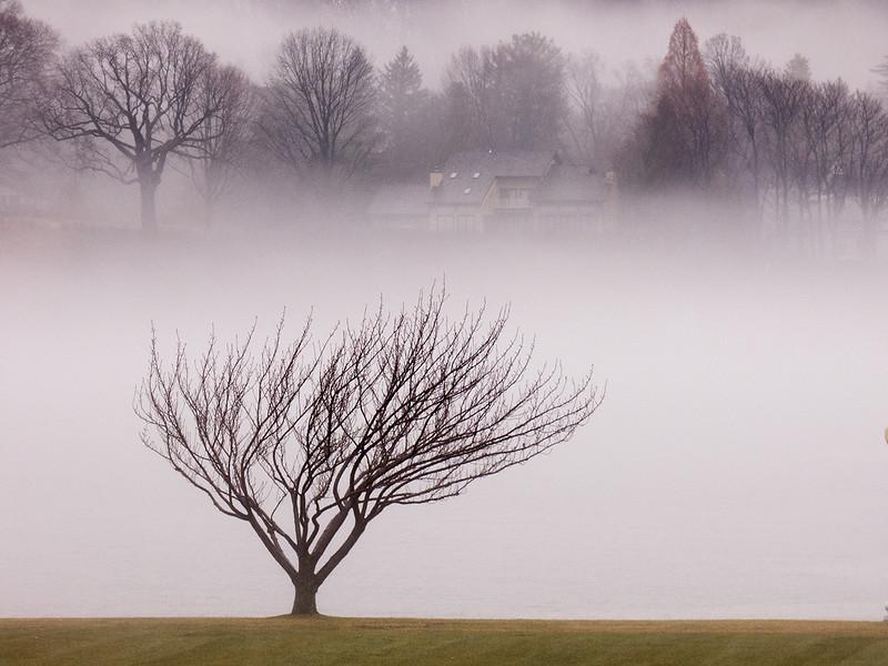 Class3D_HM_tuan q pham_fog on severn river