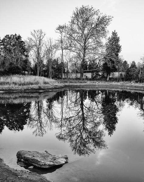 ClassMM_HM_Gorgette Grossman_Millers Pond