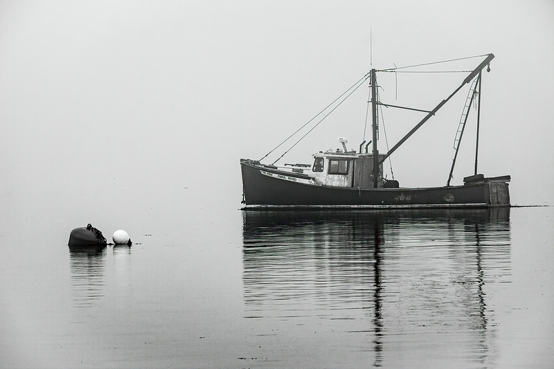 Class1M_1st_John Murray_foggy morning