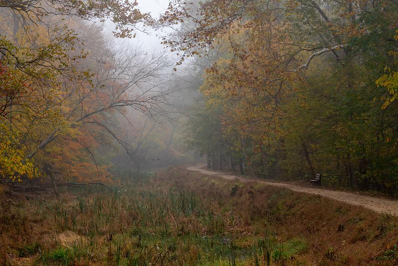 Class2D_HM_Tana Ebbole_Foggy Morning At Anglers