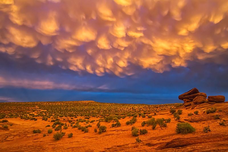 Fran Bastress - The Southwest Rocks