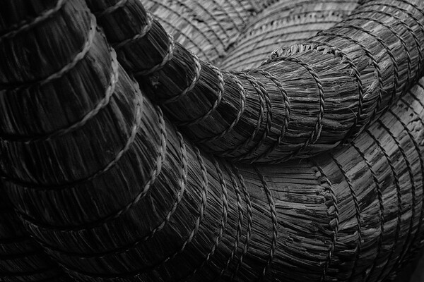 Colena Turner - Texture ~ Lines ~ Patterns