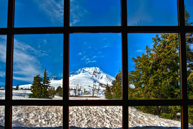 The Timberline View