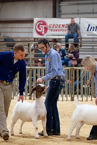 20190308_nw_goats010
