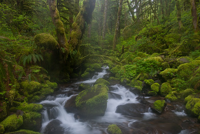 Ruckel Creek, Columbia River Gorge