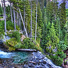 Narada Falls at Mt Rainier National Park Washington