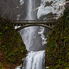 The Beginnings of an Icy Multnomah Falls