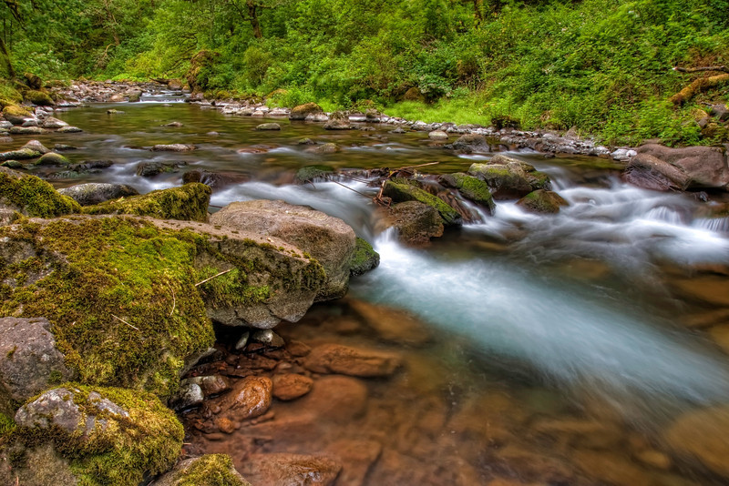 Tanner Creek Up Close
