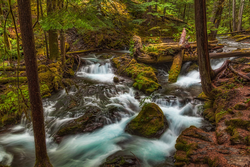 Panther Creek From Just Above Panther Creek Falls. Gifford Pinchot National Forest Washington