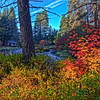 Fall on the Metolious