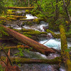 Little Zig Zag Creek. Mt Hood National Forest Oregon
