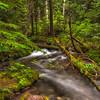 Little Zig Zag Creek. Mt Hood National Forest Oregon