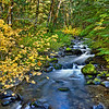 Still Creek in Fall