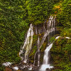 Panther Creek Falls. Gifford Pinchot National Forest Washington
