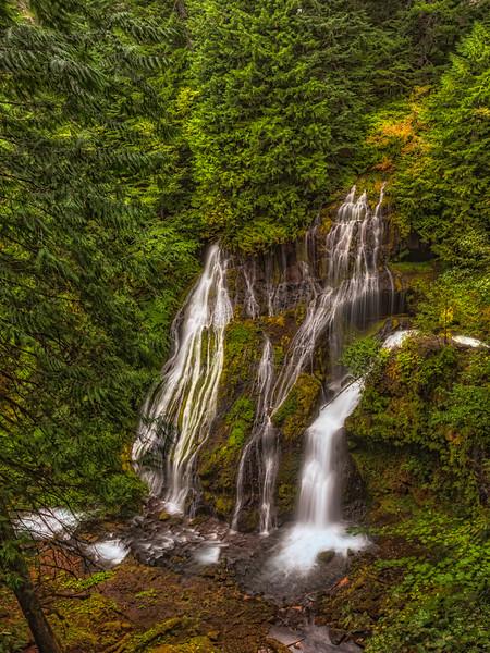 Panther Creek Falls. Gifford Pinchot National Forest Washington
