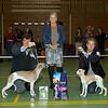 Beste Jonge Hond Whippet Teef: Of Summer's Joy Gelsey (E. Grevelt)<br /> 2de: StripPoker's Me Myself and I (A. Dijkhuizen, T. Groenendijk, A. Mast)