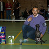 PLI - Beste Jonge Hond - Reu: Fiefoerniek's Franki Feels Groovy (S. v.d. Graaf & L. Sahuleka)