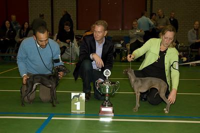 Beste Italiaanse Windhond - Jonge Honden  2 Fiefoerniek's Franki Feels Groovy - S. v.d. Graaf & L. Sahuleka 1 Fiefoerniek's Femme Formidable FCI WYW'09 - S. v.d. Graaf & L. Sahuleka