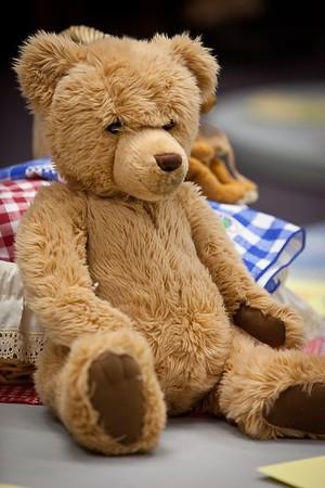 1-Teddy Bear Picnic