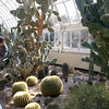 NY Botanical Gardens - 2007 At the Gardens
