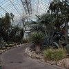 NY Botanical Gardens - 2010 At the Gardens