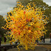 Chihuly at the Garden