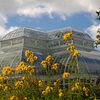 NY Botanical Gardens - Fall 2005