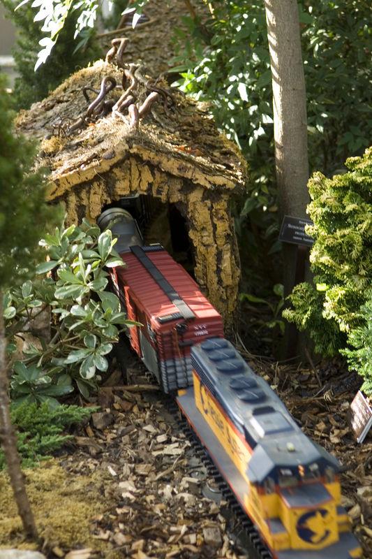 Holiday Train Show