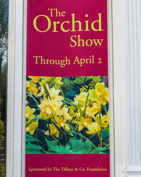 NY Botanical Gardens - 2006 Orchid Show