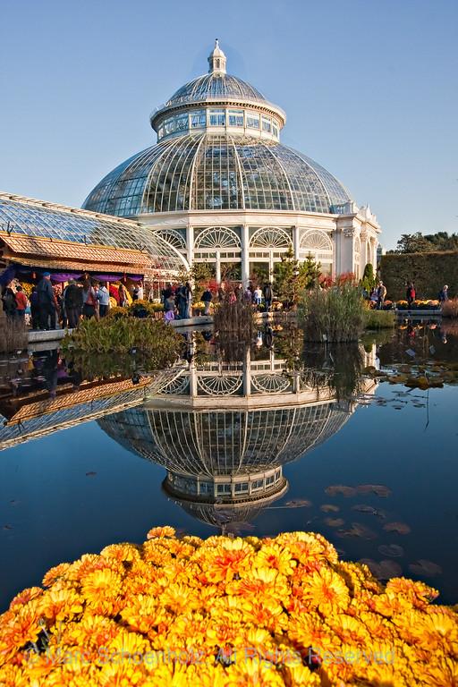 The Conservatory during the KiKu festival, Photographed at: New York Botanical Gardens, Bronx, NY. October, 2009  ©2009 Marc Schoenholz