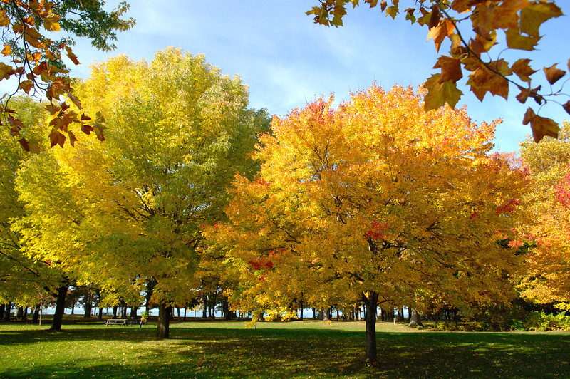 Fort Niagara State Park, NY  Taken 10 / 25 / 2009  posted 6 / 3 / 2012