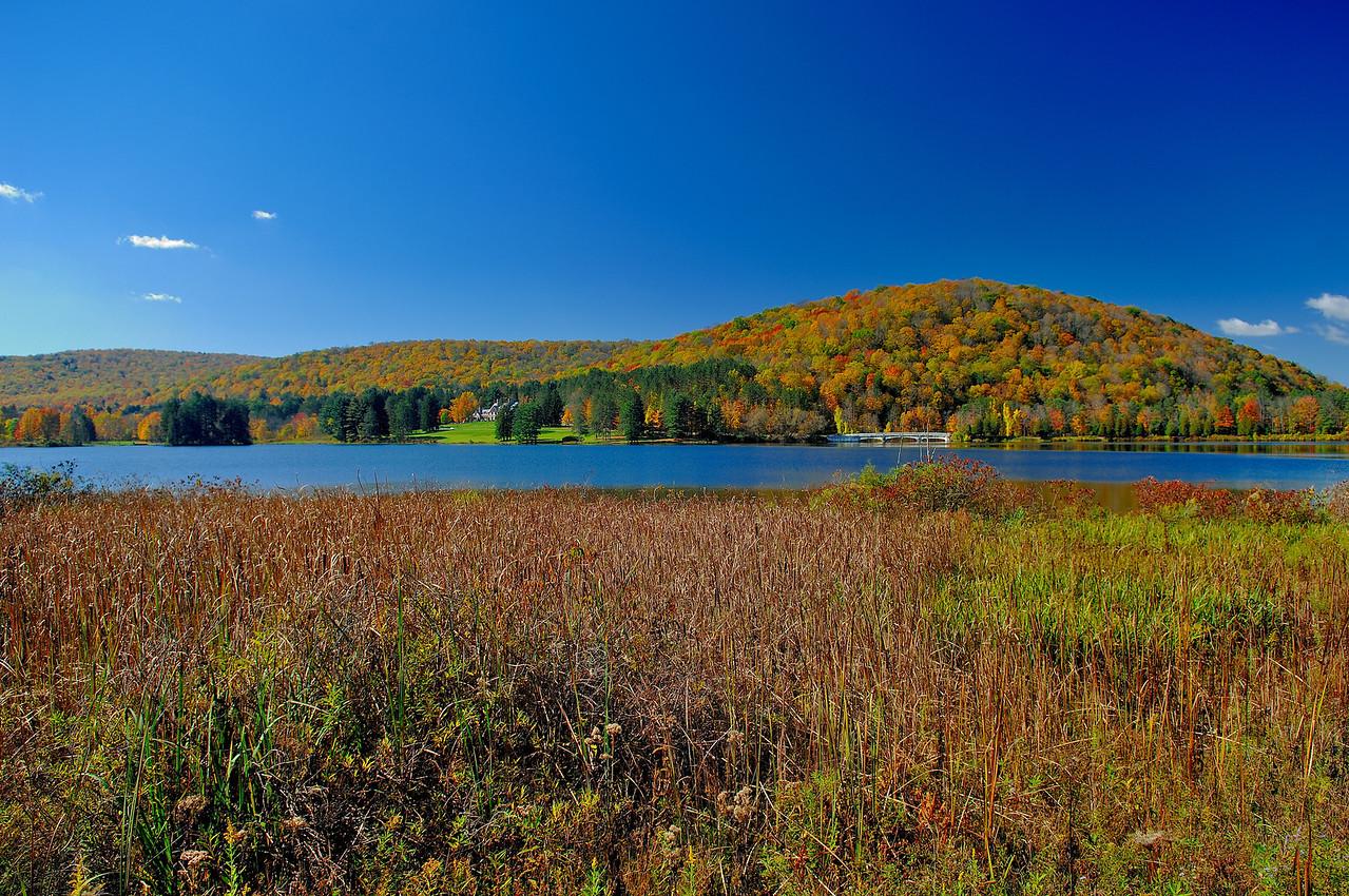 Allegany State Park,NY