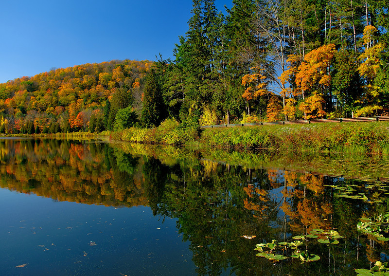 Allegany State Park,NY   ( Red House Lake )