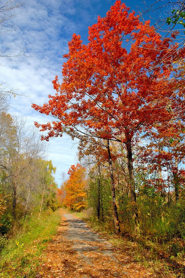 Lewiston NY  Bike path