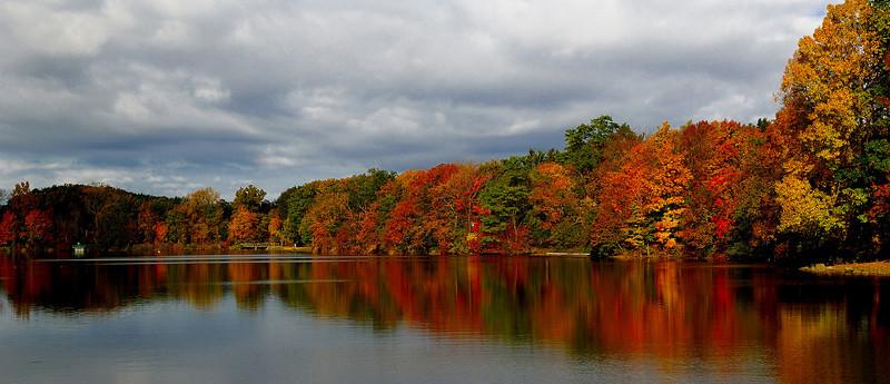 Orchard Park,NY