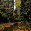 This was taken last fall at Watkins Glen State Park