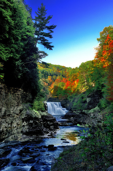 Letchworth State Park (Lower falls)