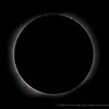 """August 1, 2008 Solar Eclipse, Khoton lake Mongolia, Inner Corona with Prominences Close-up, Sky Watcher ED 80, 600 mm f/7.5, on a stripped down Losmandy GM-8 mount.  Canon 40D camera, ISO 200, 1/1000"""", 10:57:52 UT"""